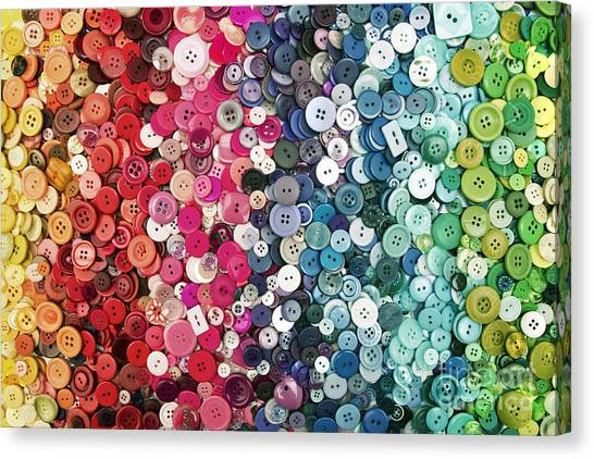 Button Button Canvas Print by Catherine MacBride