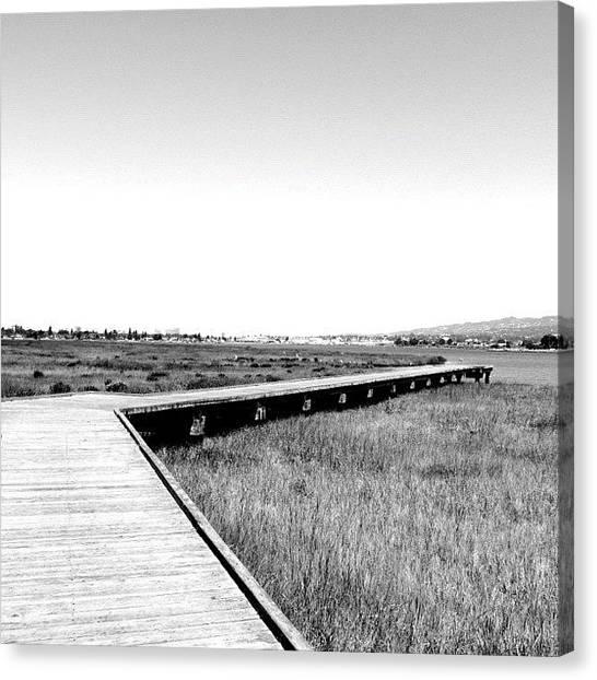 Marshes Canvas Print - #bw #blackandwhite #landscape #marsh by Tammy List
