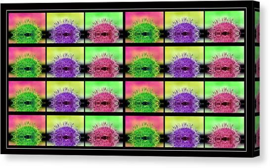 Cactus Dreaming Canvas Print by Edie Kynard