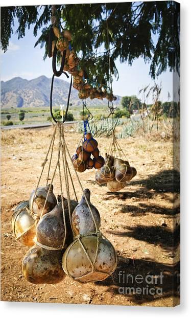 Gourds Canvas Print - Calabash Gourd Bottles In Mexico by Elena Elisseeva