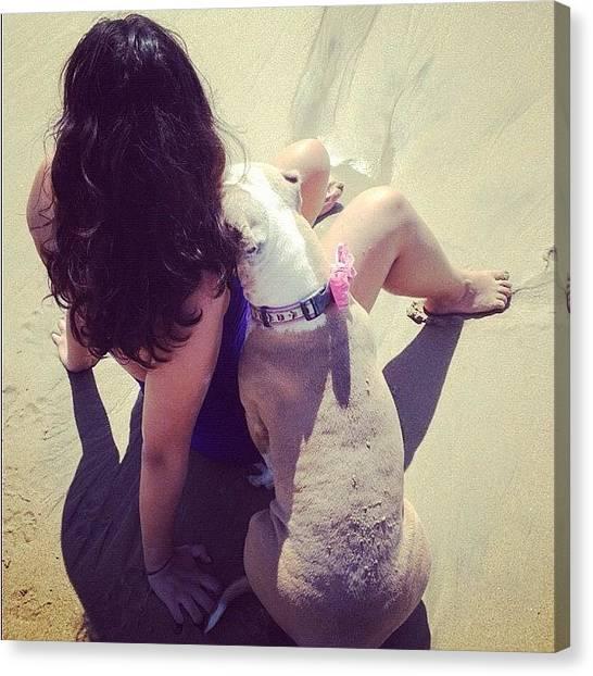 Baby Canvas Print - #california #pitbull #love  Cali Gurls by Lala Baby