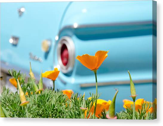 Canvas Print featuring the photograph California Poppy by Margaret Pitcher