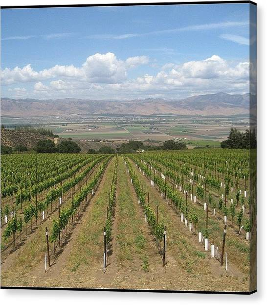 Winery Canvas Print - California Winery #wine #california by Linda Brown