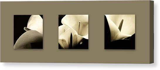 Calla Lilies Art Canvas Print