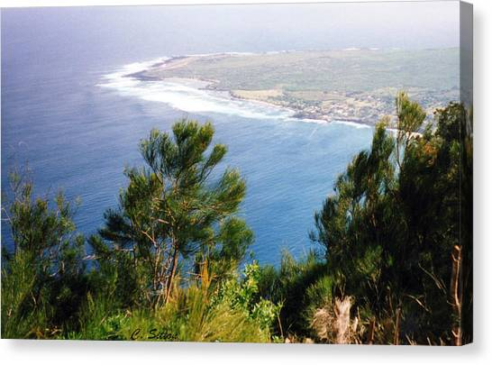 Calm Hawaiian Shore Canvas Print
