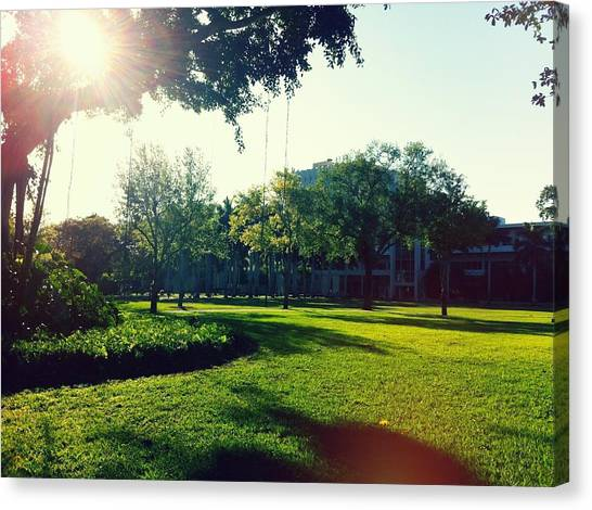 University Of Miami Canvas Print - Campus Life by Teff