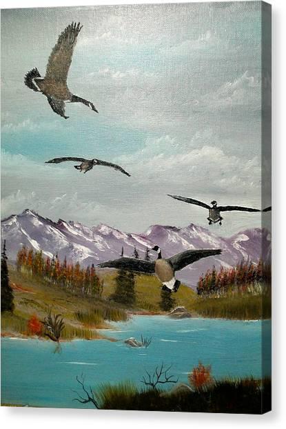 Canada Air Show Canvas Print