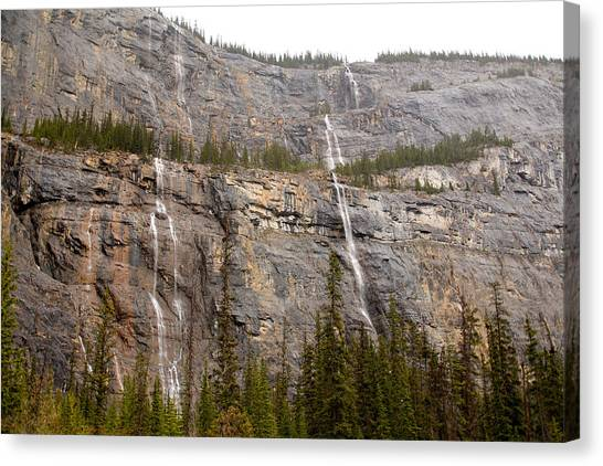 Canadian Water Fall 1924 Canvas Print by Larry Roberson