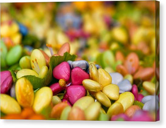 Candy Flowers Canvas Print