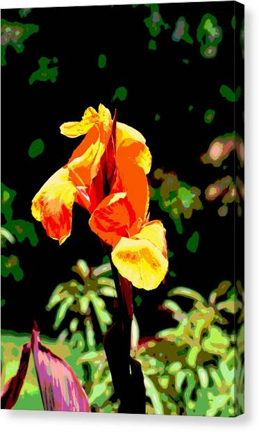 Canna Canvas Print - Canna In Summer by Dorrie Pelzer