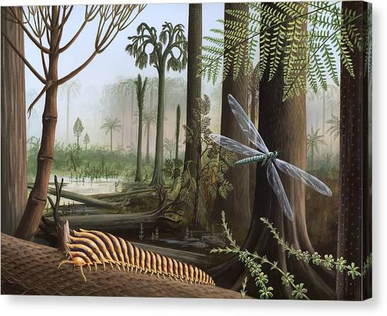 Carboniferous Insects, Artwork Canvas Print by Richard Bizley