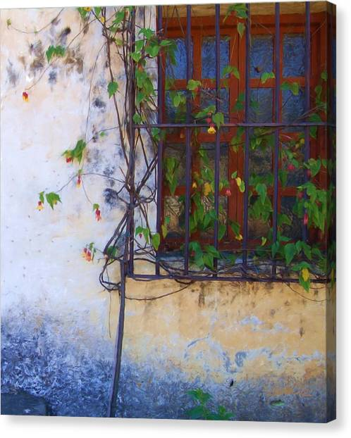 Carmel Mission Window And Flowers Canvas Print by Jim Pavelle