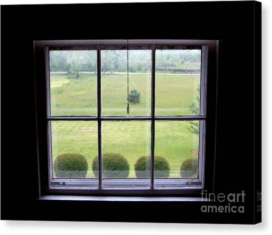 Carolina Meadow Canvas Print