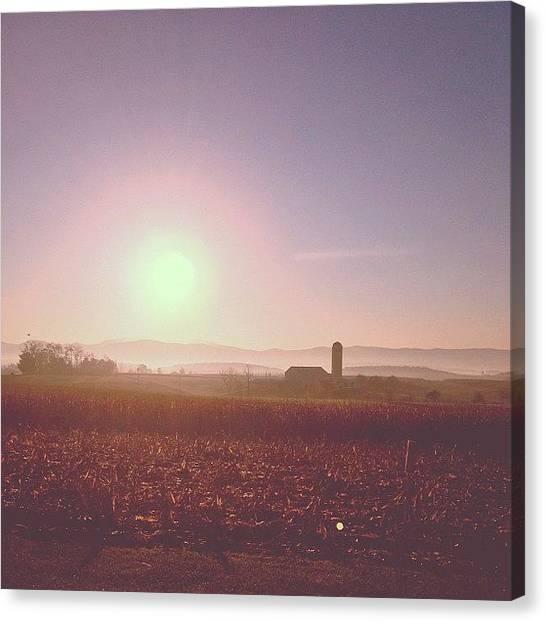Solar Farms Canvas Print - Carpe Diem by Sam Harris