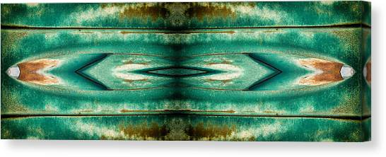 Carschach002 Canvas Print by Tony Grider