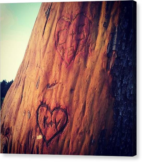 Humans Canvas Print - Carving Initials Into Trees by Janel Erikson