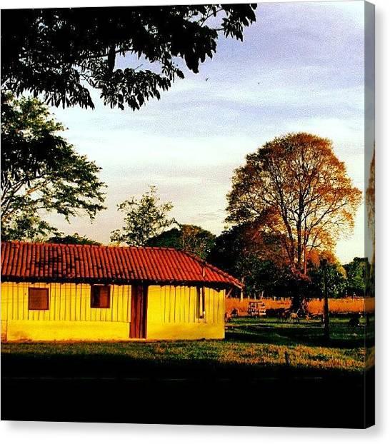 Farmers Canvas Print - Casa De Madeira #bonito by Gogliardo Maragno
