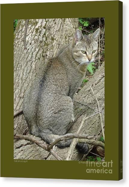 Cat On A Log-ii Canvas Print