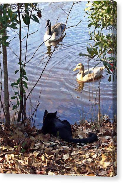 Cat Play Canvas Print by Joan Meyland