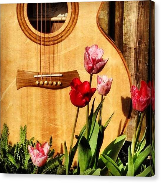 Tulips Canvas Print - Catherwood Guitar Beautiful To Listen by Lisa Catherwood
