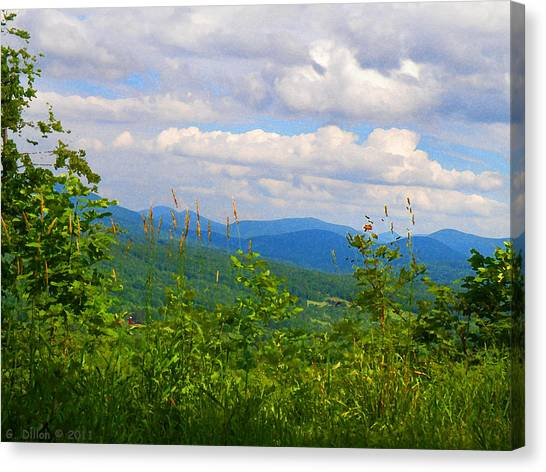 Catskill Mountain Hillside Canvas Print