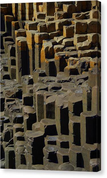 Causeway Stones Canvas Print by Cat Shatwell