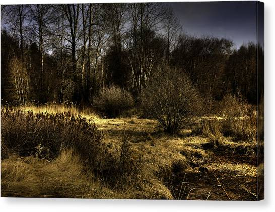 Cd'a River Flood Plain Canvas Print by Grover Woessner