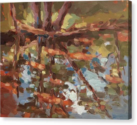 Cedar Creek Reflection Canvas Print by Jenny Anderson