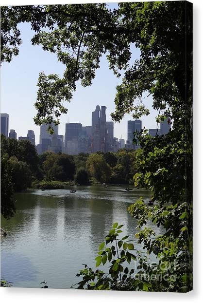 Central Park 35 Canvas Print