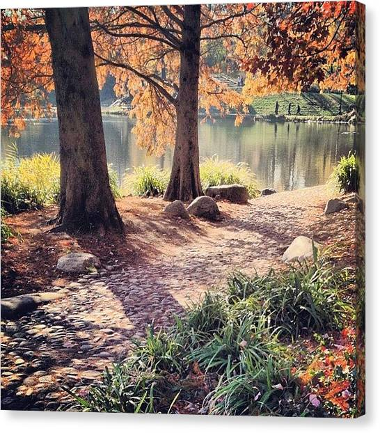 White Canvas Print - Central Park Early Morning by Randy Lemoine