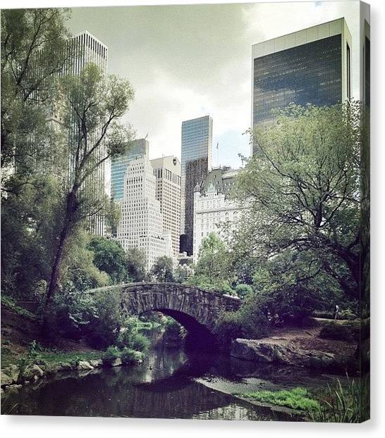 France Canvas Print - Central Park by Randy Lemoine