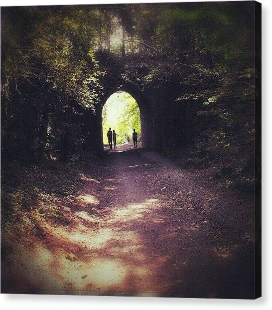 Forest Paths Canvas Print - Chasing A #dream ... (between #telford by Alexandra Cook
