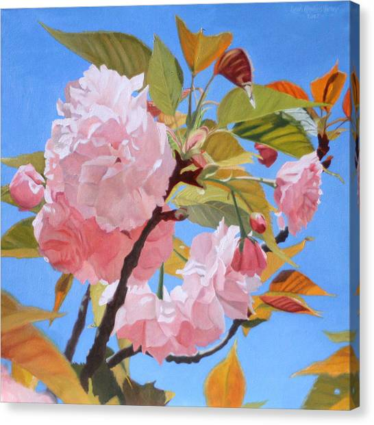 Cherry Blossom Time Canvas Print by Leah Hopkins Henry