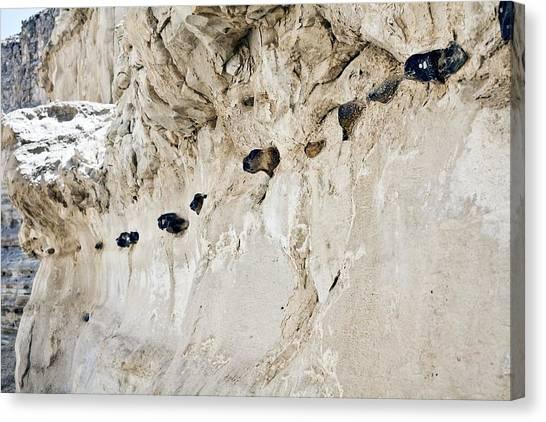 Negev Desert Canvas Print - Chert Nodules In Chalk by Dirk Wiersma