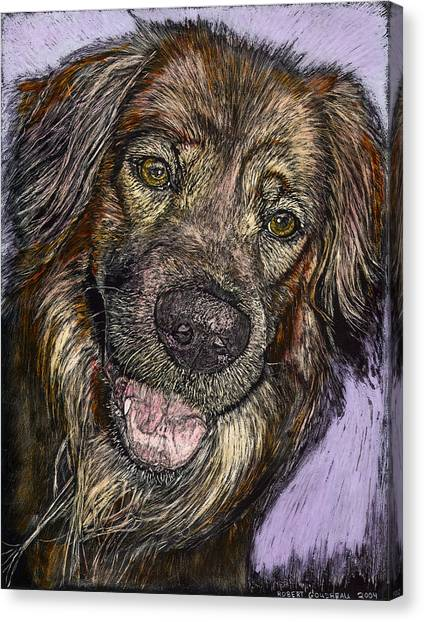 Chester The Dog Canvas Print by Robert Goudreau