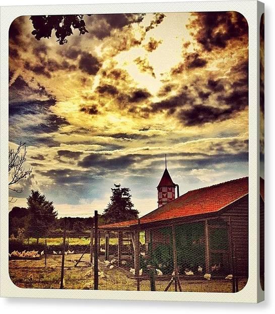 Dutch Canvas Print - Chicken Farm In Yesterday's #sunset by Wilbert Claessens