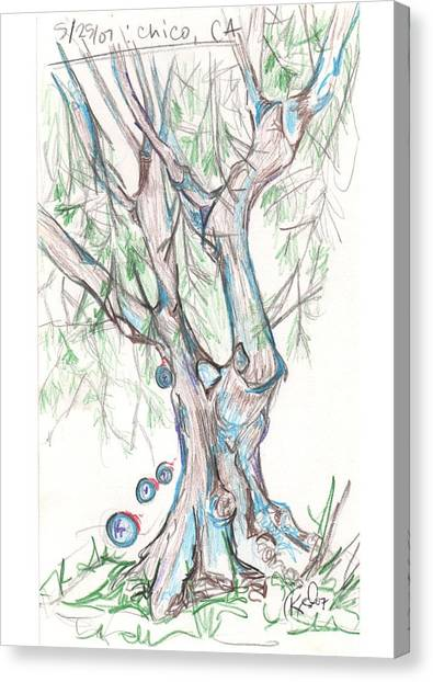 Chico Ca River Tree Canvas Print by Carol Rashawnna Williams