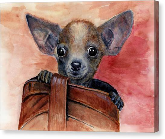 Chihuahua Puppy Canvas Print by Katerina A Cechova