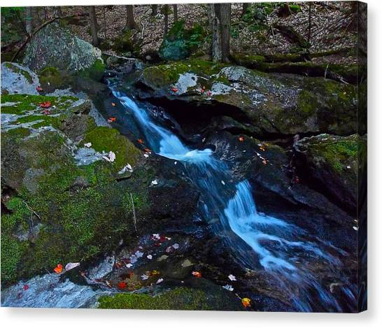 Childs Brook Summer 13 Canvas Print by George Ramos