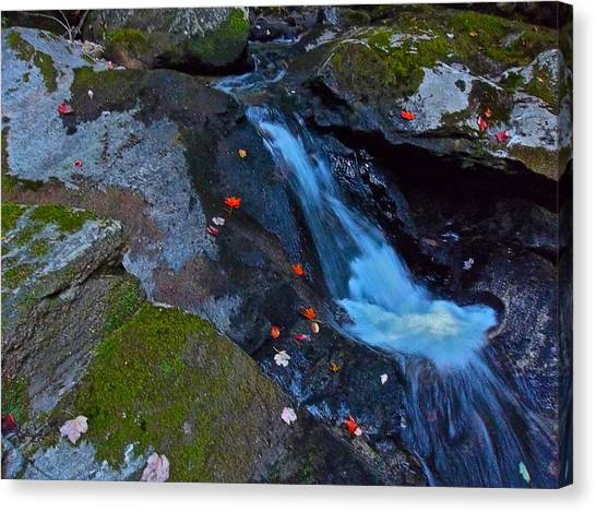 Childs Brook Summer 16 Canvas Print by George Ramos
