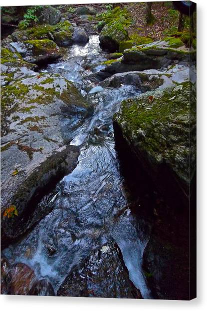Childs Brook Summer 21 Canvas Print by George Ramos
