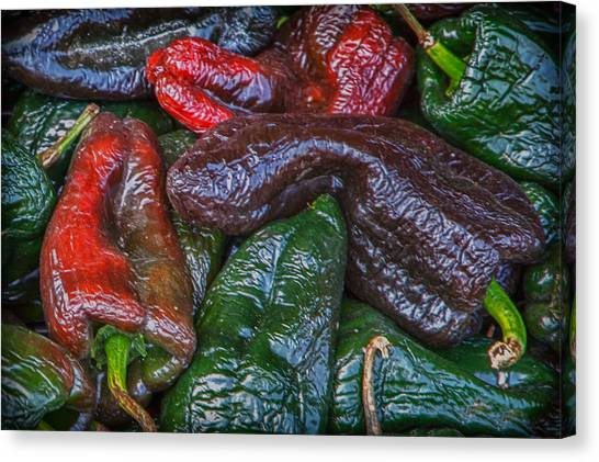 Chile Ancho Canvas Print