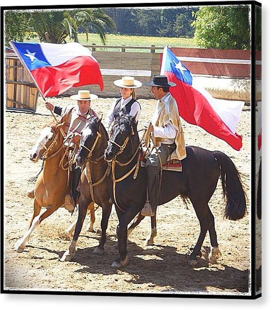 Rodeos Canvas Print - Chilean National Sport #rodeo #horses by Polly Rhodes