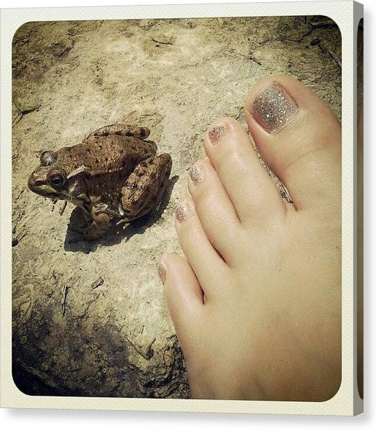 Frogs Canvas Print - Chillin' With My Glittery Toes. #frog by Crystal LaTessa