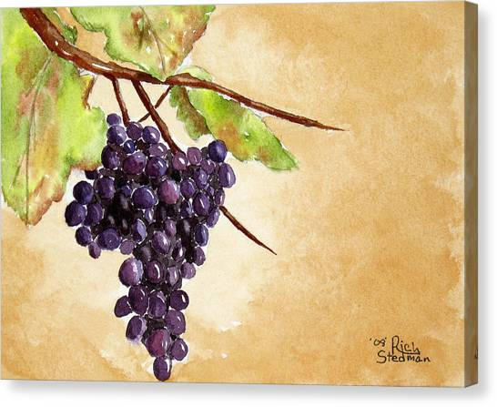 Chris' Grapes Canvas Print