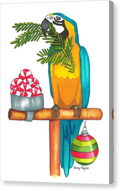 Christmas Macaw Canvas Print