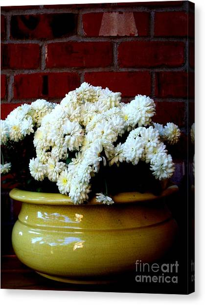 Chrysanthemums In A Yellow Pot Canvas Print