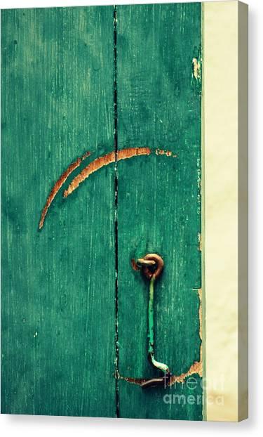 Circle Of Life Canvas Print by Vishakha Bhagat