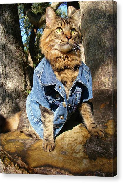 Classic Denim Canvas Print