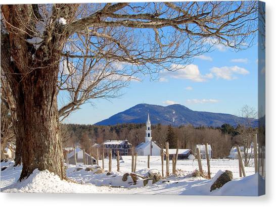 Classis Tamworth Trees Winter Canvas Print